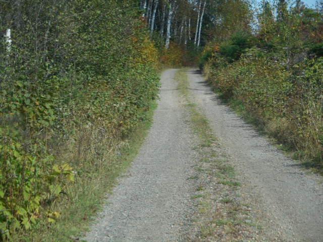 Trestle Pine Road
