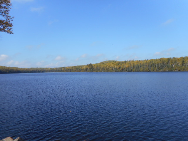 Trestle Pine Lake